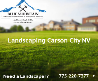 Landscaping Carson City Nv Tips And Tricks For A Great Yard